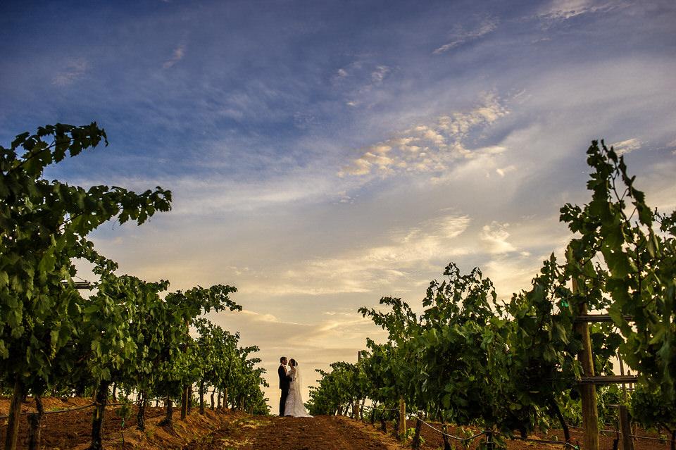 019 bride groom epic fineart wedding vineyard museo del vino wedding rutadelvino