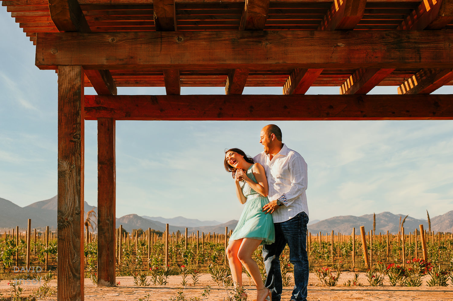 Happy Couple at their Vineyard Engagement session