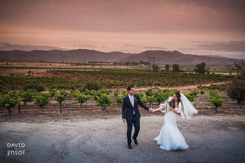 bride-groom-la-joya-vineyards-wedding
