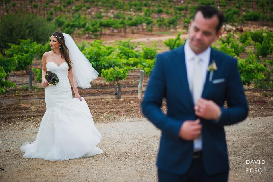 bride-groom-parque-la-joya-vineyards