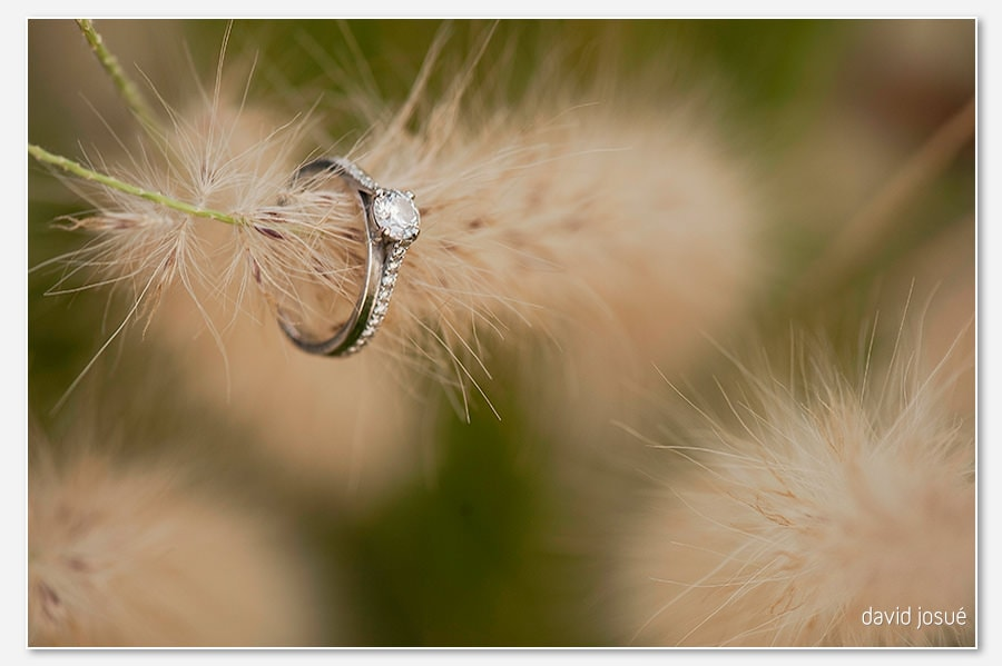 save the date engagement ring